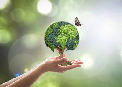 Vamos falar de meio ambiente