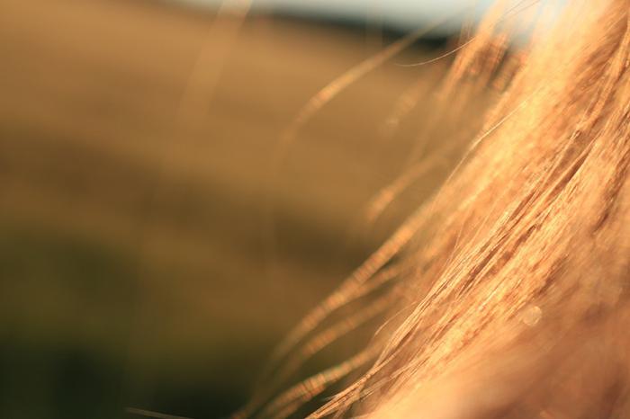 Conheça a estrutura dos fios de cabelo