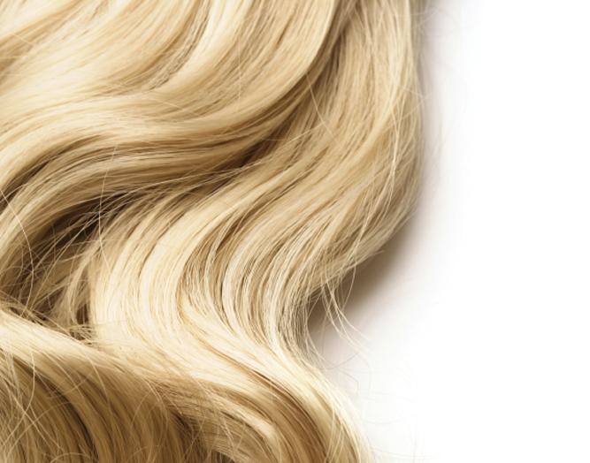 A anatomia do cabelo humano